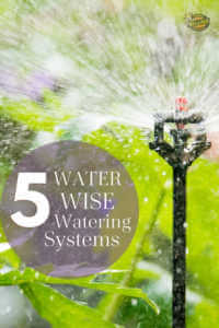 """Sprinkler watering lawn with text, """"5 water wise watering systems"""""""