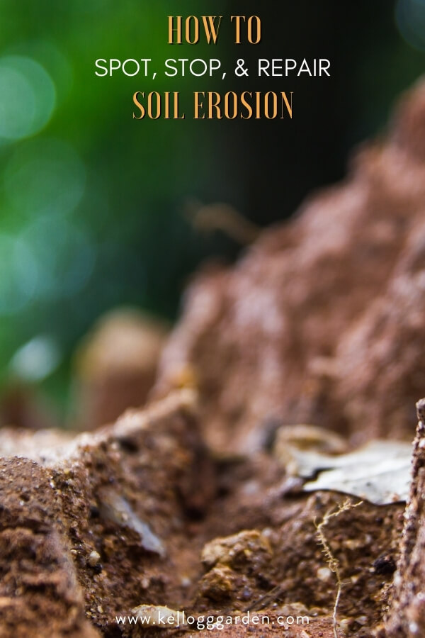 """Eroded soil with text, """"How to spot, stop, and repair soil erosion"""""""