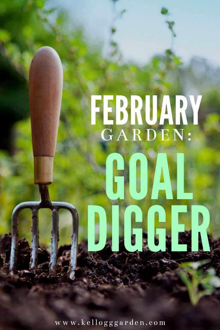 February Garden Goal Digger Pin