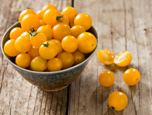 Yellow-Sungold-Cherry-Tomatoes