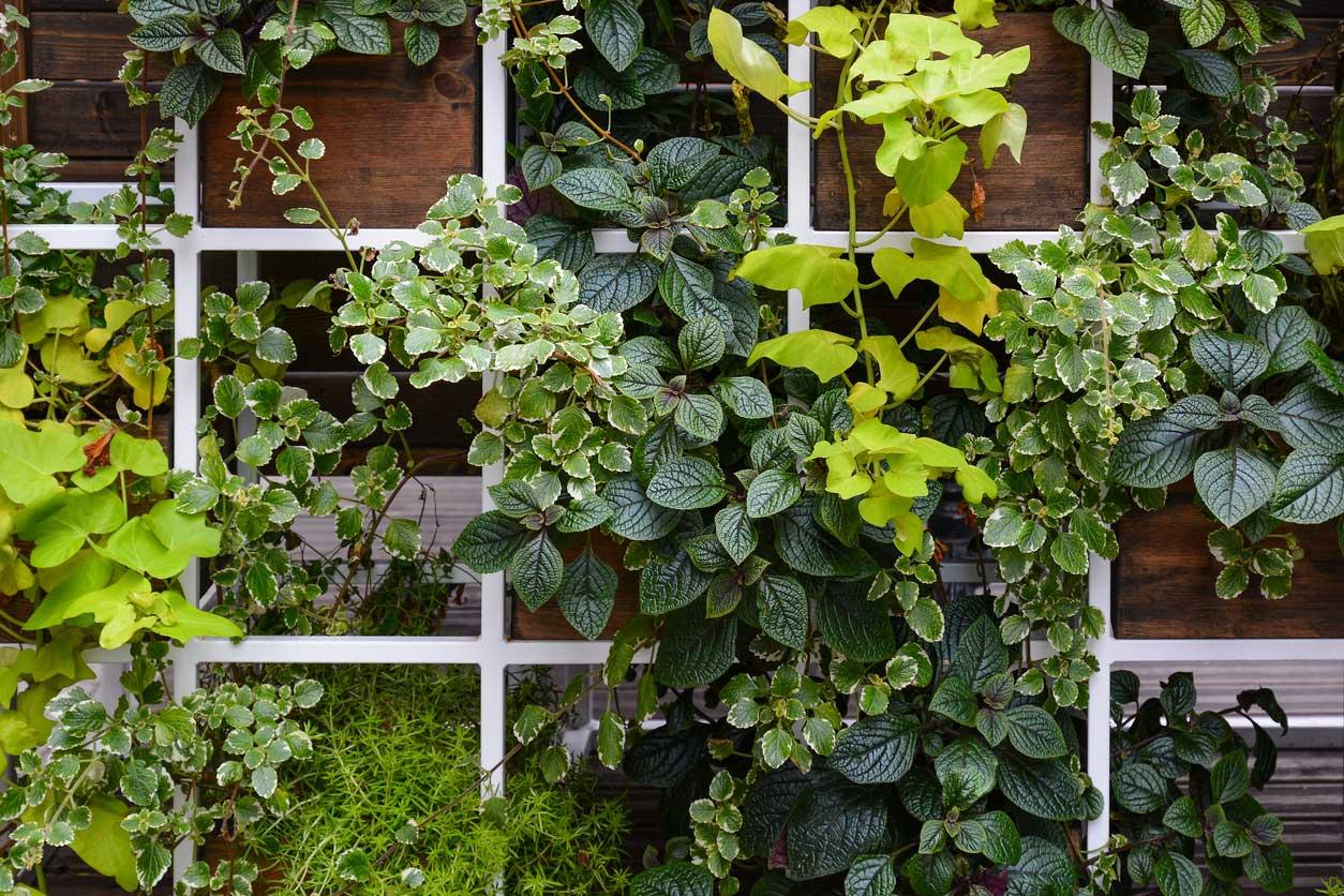 Fabulous Garden Space Hack Vertical Vegetables Short Links Chair Design For Home Short Linksinfo