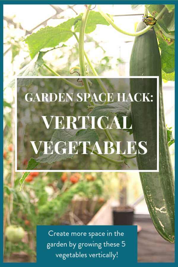Vertical Vegetables Pin