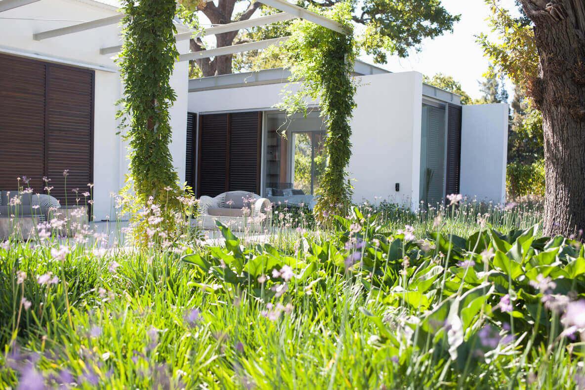 Vibrant Patio Garden