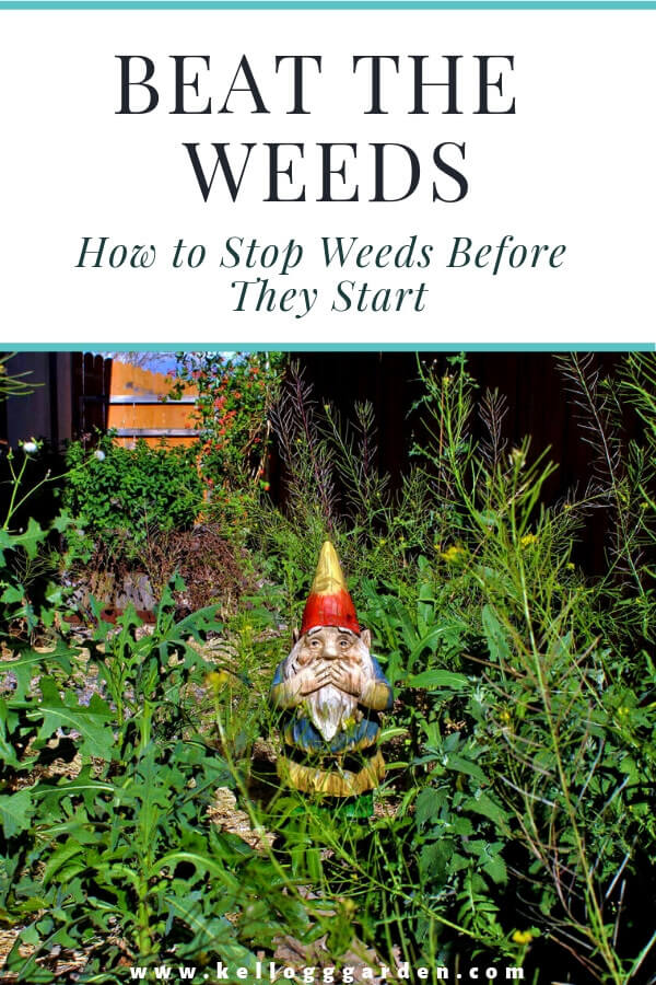 Beat the weeds pinterest image