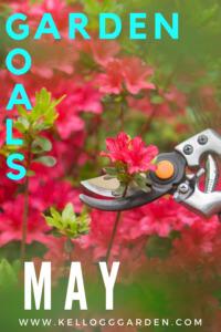 pruning spring flowers may garden goals
