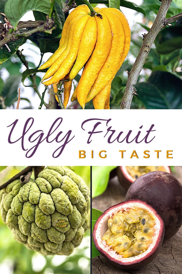 Ugly food with big taste pinterest image