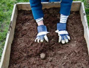 hands patting down brown soil