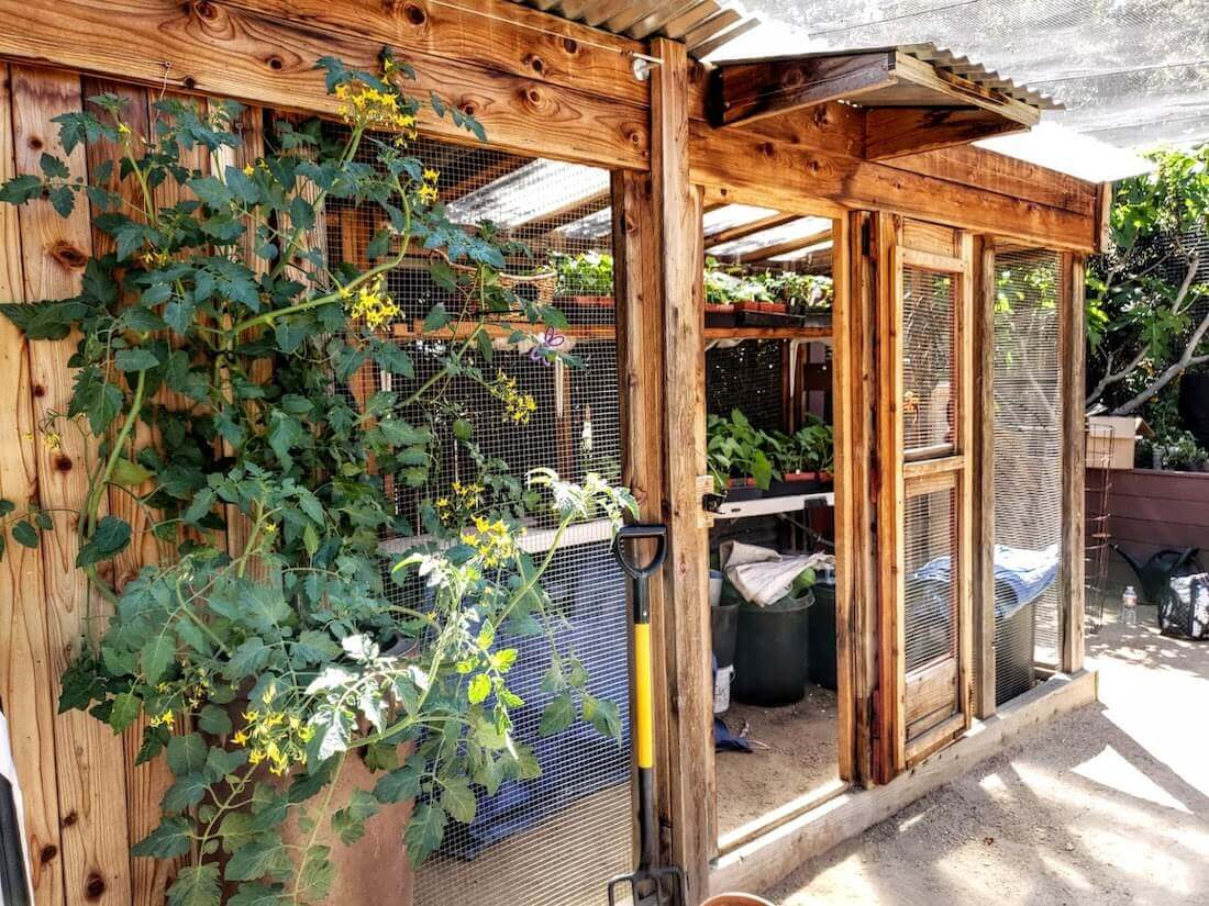 Shed with flowers in it