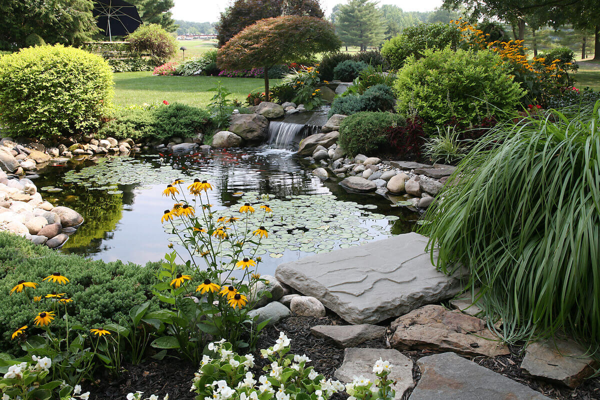 Landscape design pond with waterfall