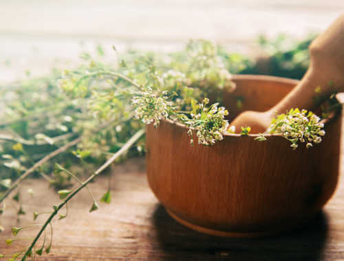 medicinal herbs in bowl