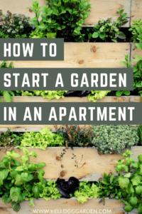 vertical garden pinterest image