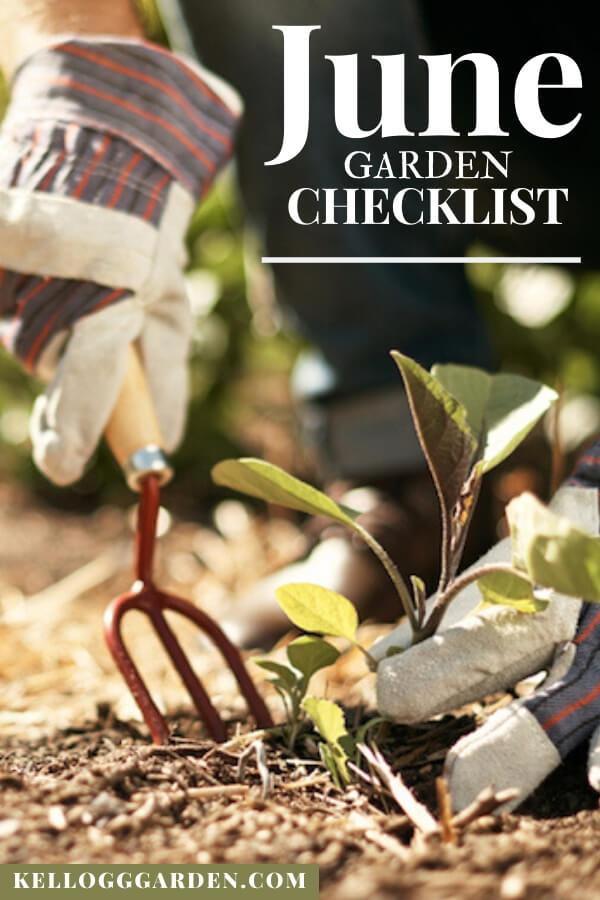 """Gardener planting seeding with text, """"June garden checklist"""""""