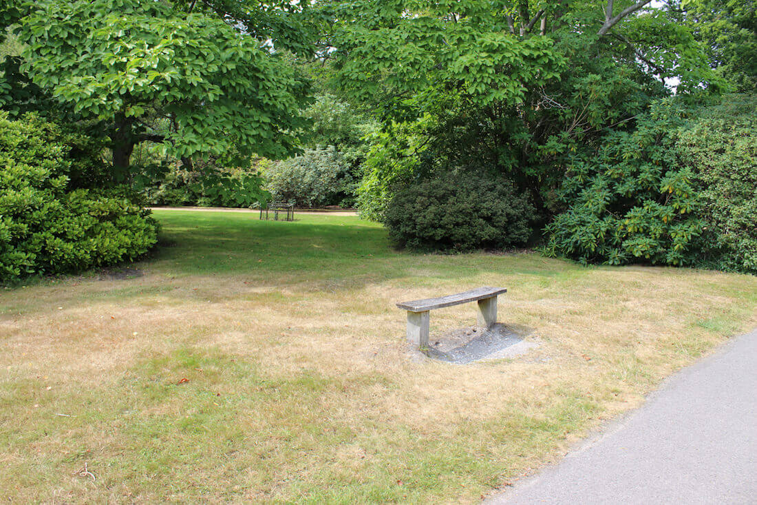 Photo showing dead grass on a park lawn, due to a lack of rain (drought) during particularly hot, dry summer weather, and no watering / irrigation. The deciduous trees in the background have deeper roots and have been able to find plenty of moisture, remaining nice and green. A simple wooden bench provides a place to sit.
