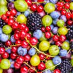 Thornless berries