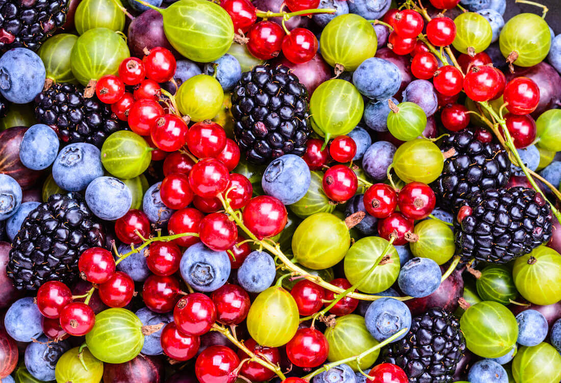 Thornless berries