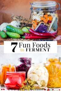 """Jars of fermented garden vegetables with text, """"7 fun foods to ferment"""""""
