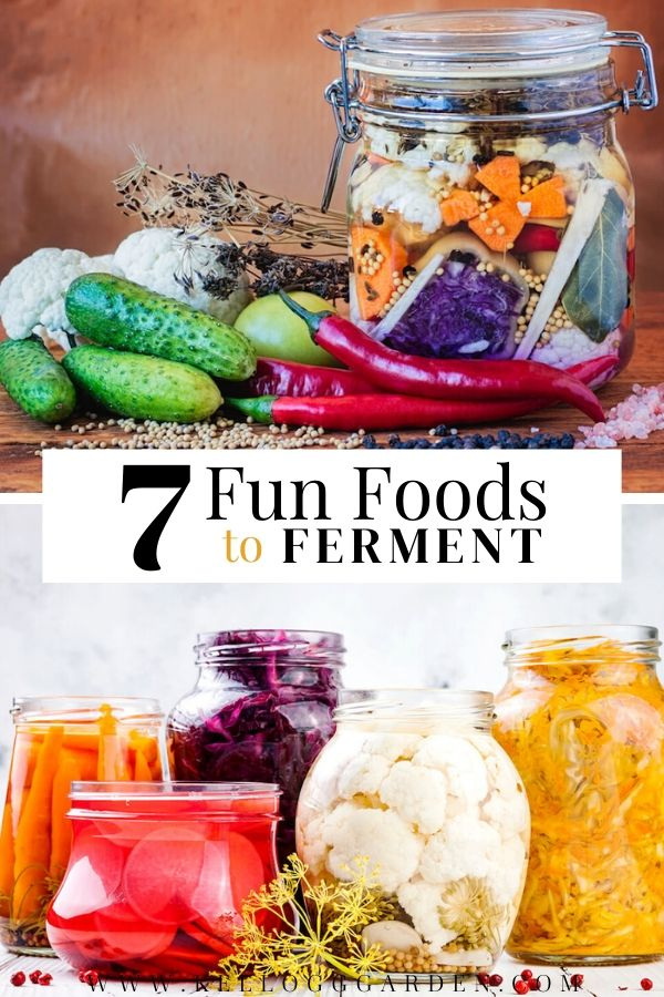 "Jars of fermented garden vegetables with text, ""7 fun foods to ferment"""