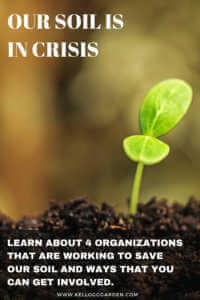 """Seedling sprout in soil with text, """"Our soil is in crisis. Learn about 4 organizations that are working to save our soil and ways that you can get involved"""""""