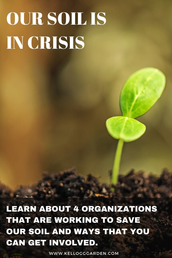 "Seedling sprout in soil with text, ""Our soil is in crisis. Learn about 4 organizations that are working to save our soil and ways that you can get involved"""