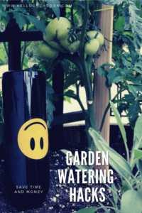 garden watering hacks