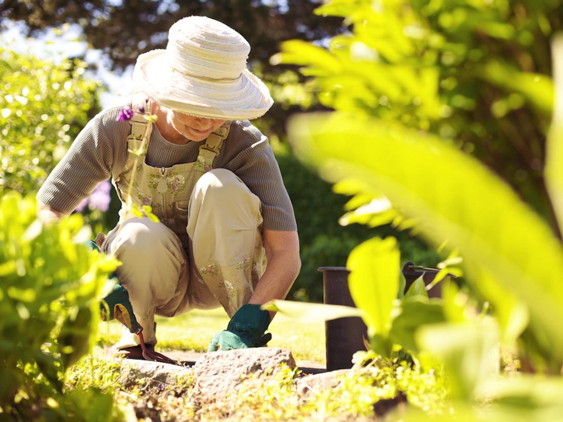 Gardener July digger