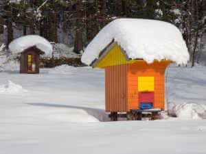 beehive winter