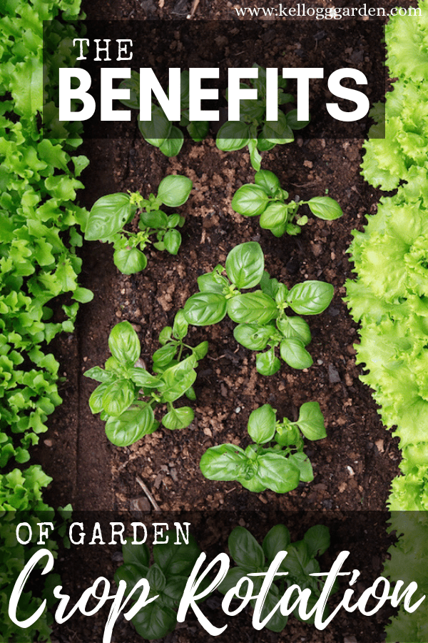 benefits of garden crop rotation