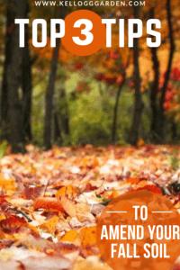 Amending Your Fall Soil