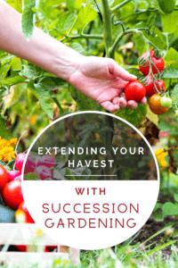 Succession Gardening PI