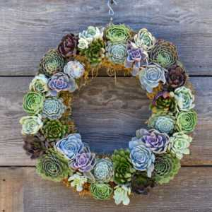 Blue and green succulent wreath