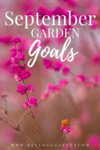 """Pink close up wild flowers with text, """"September garden goals"""""""