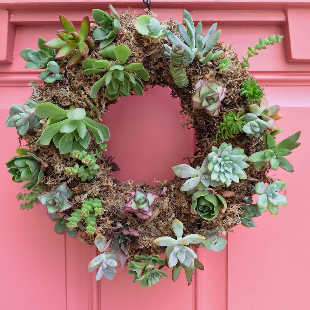Wreath made of succulents