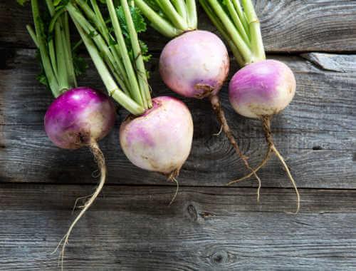 turnip feature