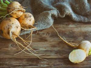 turnip roots