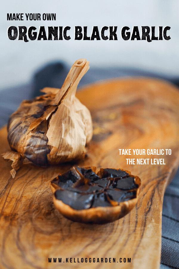 Black garlic pinterest image