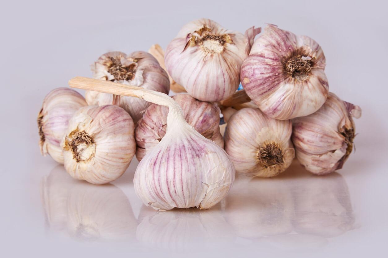 Pile of garlic bulbs