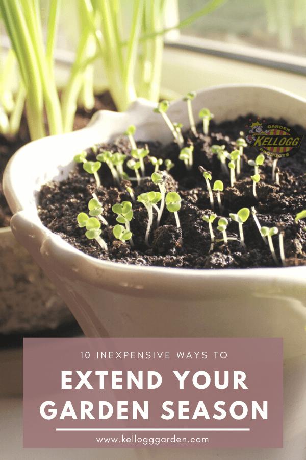 Extend your garden season pinterest image