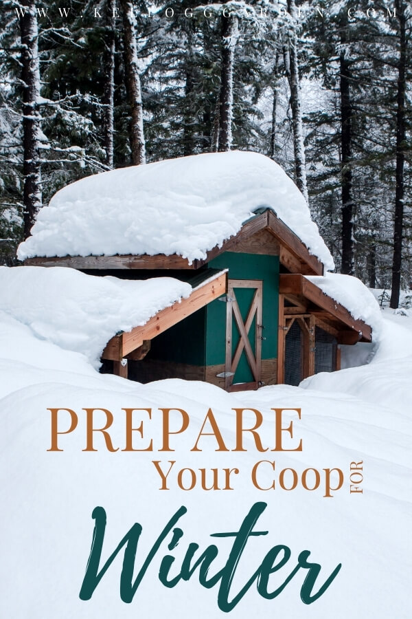 "Chicken coop covered in snow with text on image, "" Prepare your coop for winter"""