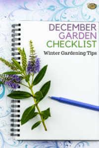 "Notebook with herbs and text, ""December garden checklist. Winter gardening tips"""