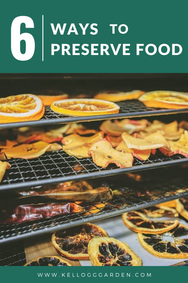 """Fruits on drying racks with text, """"6 ways to preserve food"""""""