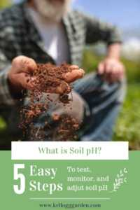 """Pinterest Image of a man holding soil with text reading, """"5 easy steps to test, monitor and adjust soil pH"""""""