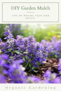 Purple Bugleweed Flower Pinterest Image Link