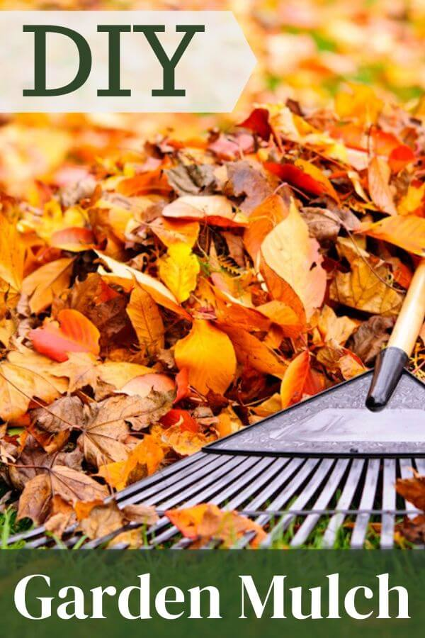 Image of leaves with text, DIY Garden Mulch