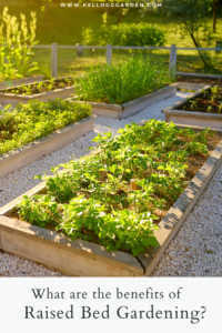 """Raised bed gardens with text, """"What are the benefits of raised bed gardening?"""