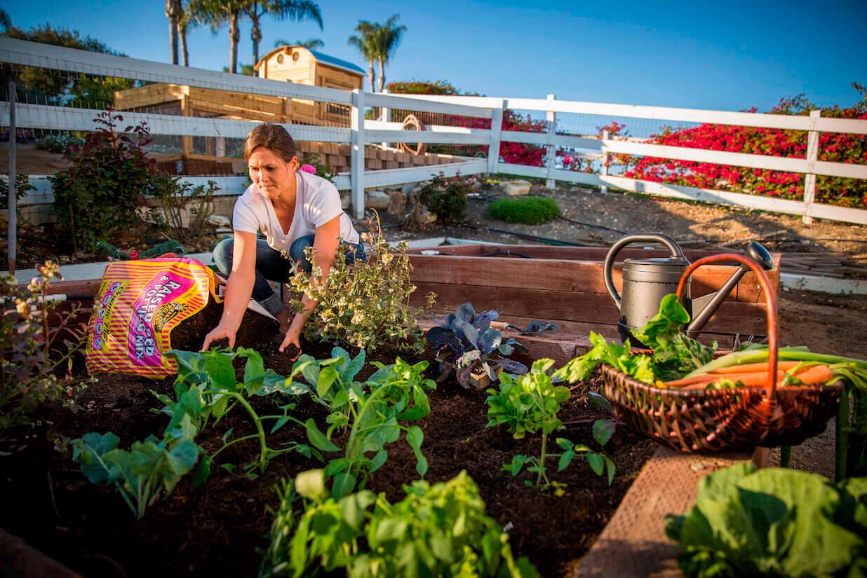 What Is Organic Soil?   Kellogg Garden Organics™