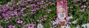 G&B Organics Bone Meal fertilizer in a field of purple flowers