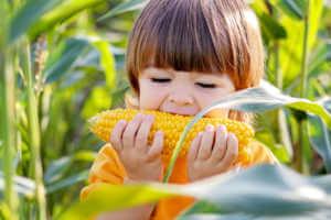 Little Boy Biting into Corn