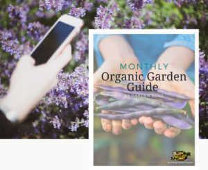 Monthly Organic Garden Guide ebook in the garden