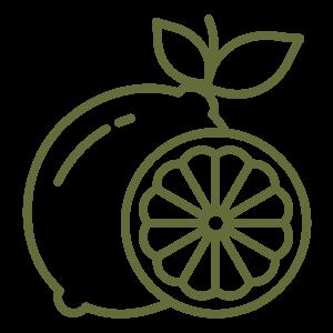 citrus lemons icon
