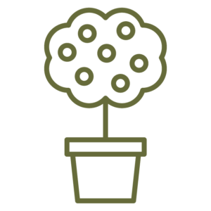container plant icon